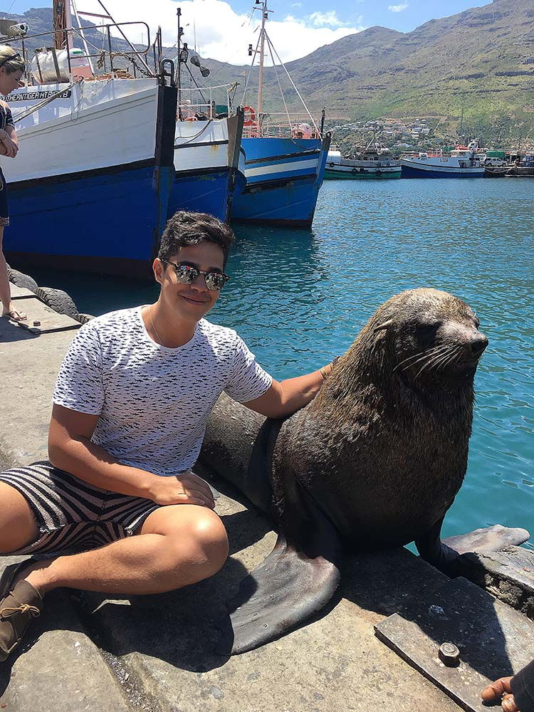 hout_bay_cape_town_seal_island_papi