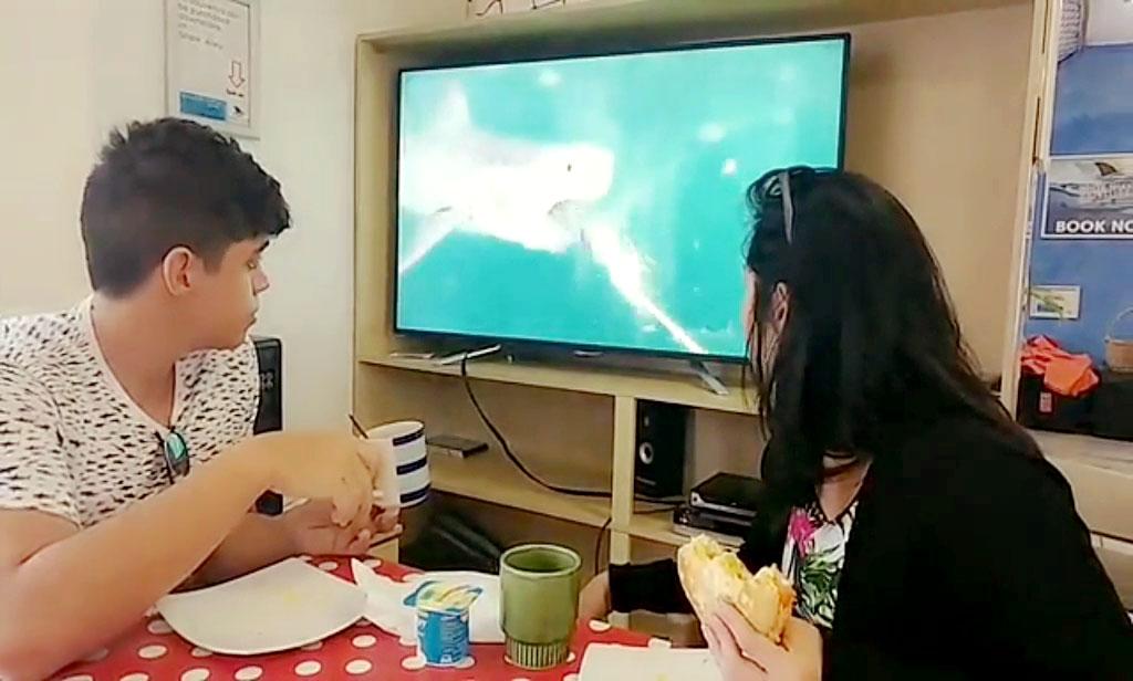 Rodrigo e Bia tomando café da manhã e assistindo imagens de um tubarão branco na tv.