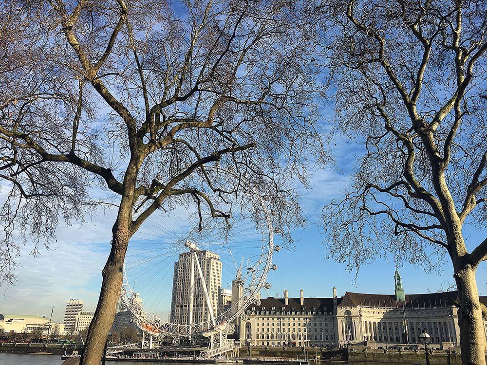 londres_london_eye_vista