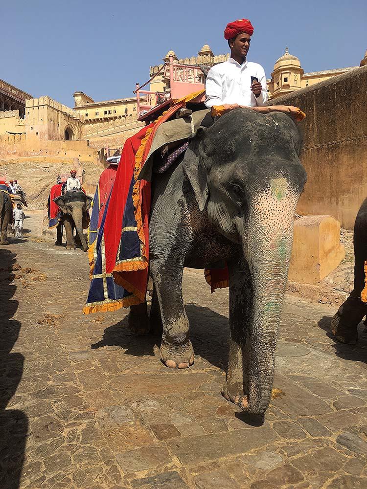 india_jaipur_amber_fort_palace_palacio_nao_e_caro_viajar_elefantes