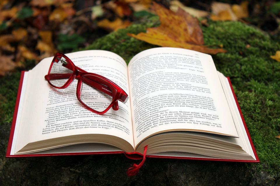 6 livros para viajar sem sair de casa!