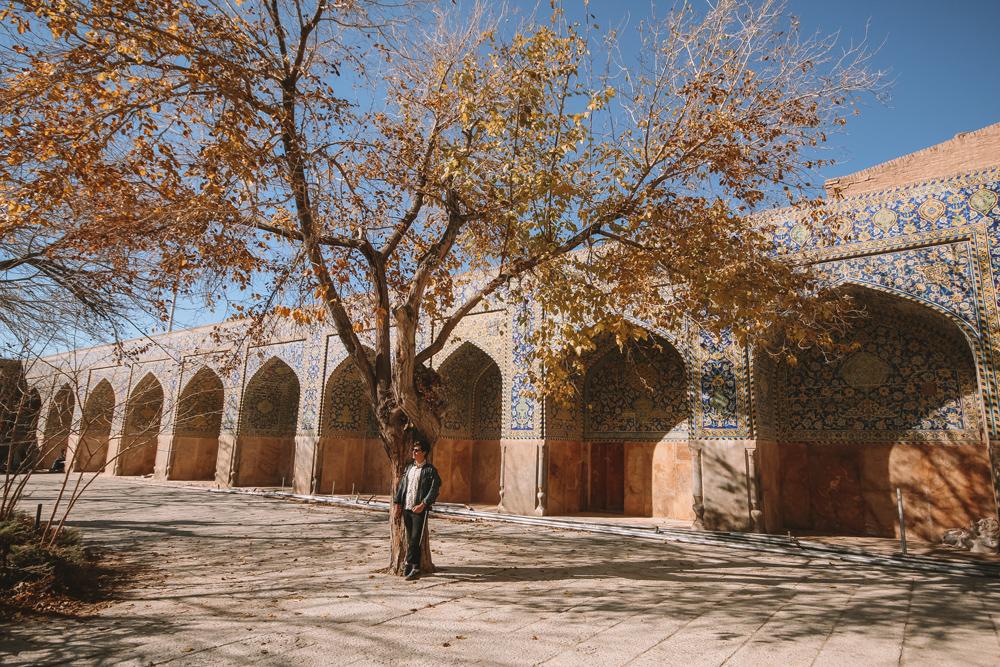 Curiosidades do Irã: Fique por dentro de tudo sobre o antigo Império Persa