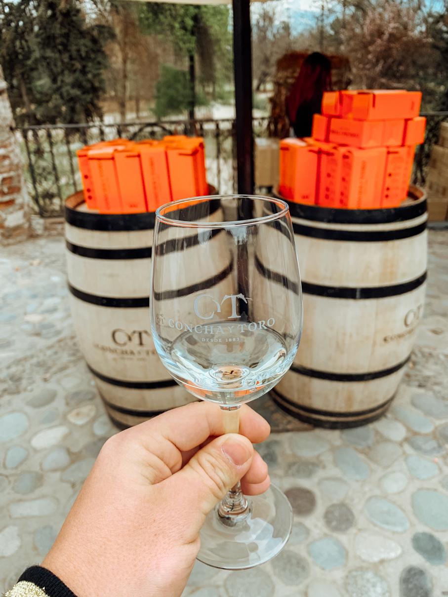 Prova de vinho branco da vinícola Concha Y Toro