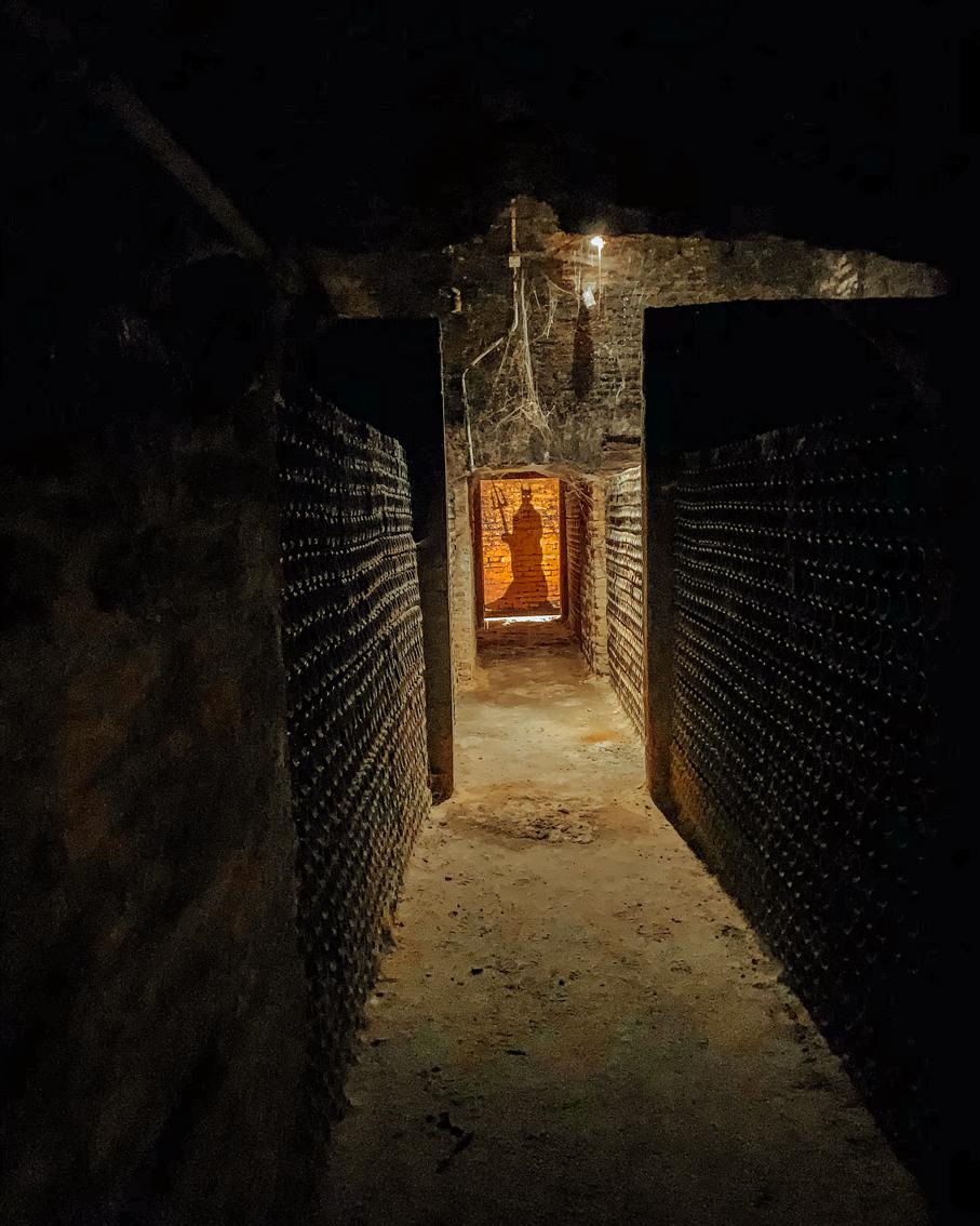Chile no inverno: Como é visitar a vinícola Concha Y Toro